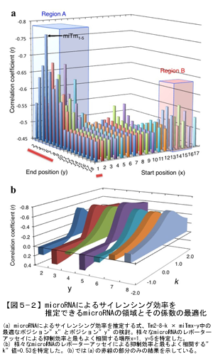 microRNAによるサイレンシング効率を推定できるmicroRNAの領域とその係数の最適化