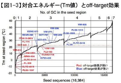 対合エネルギー(Tm値)とoff-target効果